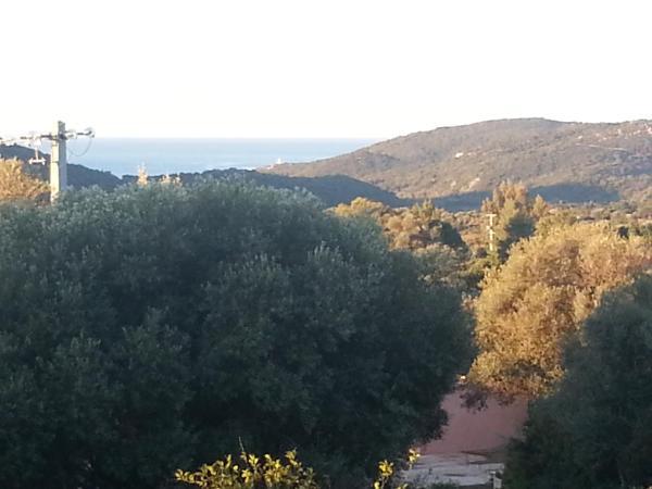Hotel Pictures: Gîte Tomasini, Monacia-d'Aullène