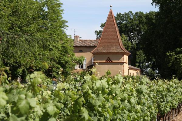 Hotel Pictures: Chambres d'Hôtes Château Touny les Roses, Lagrave