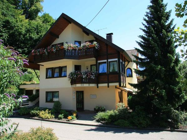 Hotel Pictures: Haus Bergquell, Münstertal