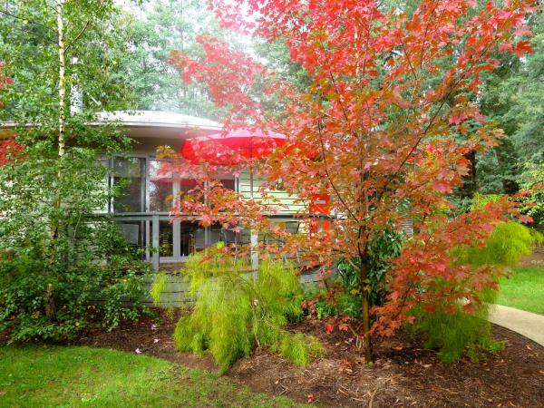 Fotos del hotel: Dalrymples Guest Cottages, Marysville