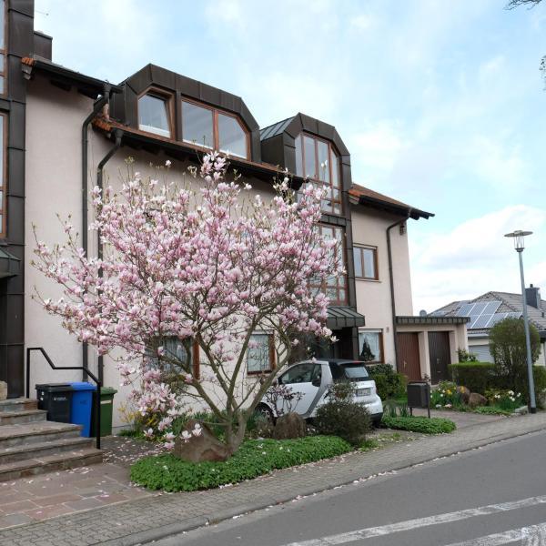 Hotel Pictures: Ferienwohnung Unter dem Schwalbennest, Wachenheim an der Weinstraße