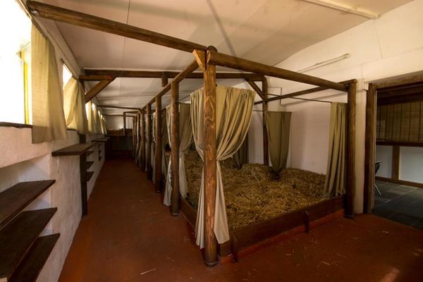 Hotel Pictures: Agriturismo La Finca, Cresciano