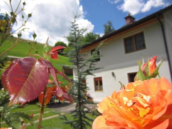 Hotelbilleder: Heidi's Schlummerkiste, Breitenau am Hochlantsch