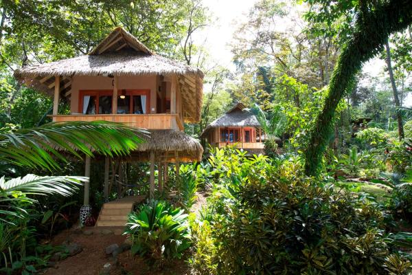 Hotel Pictures: Copa De Arbol Beach & Rainforest Resort, Drake
