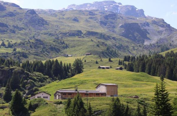 Hotel Pictures: Hof Salis - Tges'Alva, Bivio