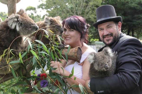 酒店图片: Fauna Australia Wildlife Retreat, Lavers Hill