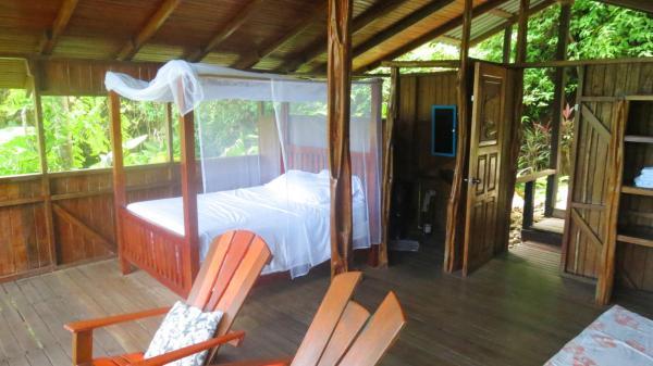 Jungle Quadruple Room