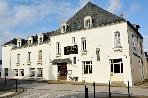 Hotel Pictures: Le Lion d'Or, Ingrandes