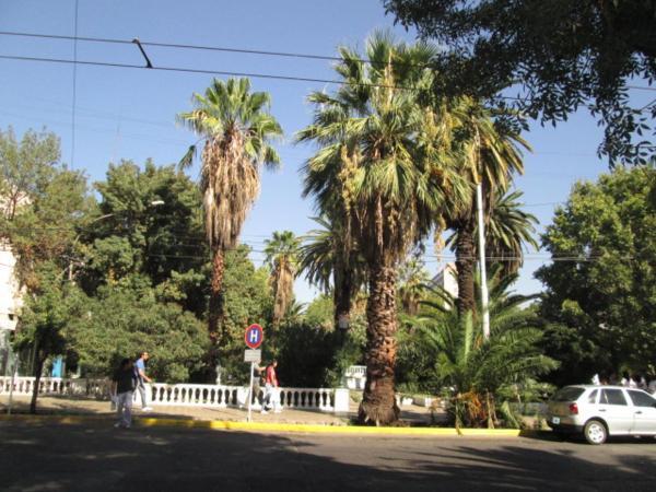 Hotel Pictures: Hotel Galicia, Mendoza