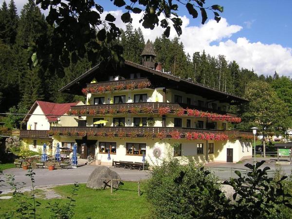 Hotel Pictures: Gasthof Mühle – Natur- & Wanderhotel, Rinchnach