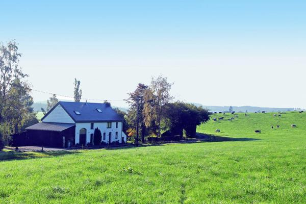 Hotellikuvia: La petite maison dans la prairie, Mierchamps