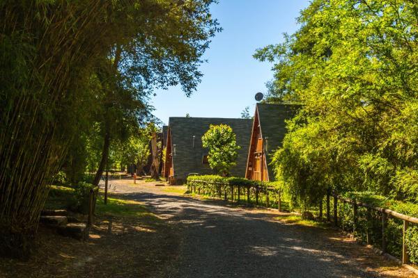 Hotel Pictures: Parque Chillan, Pinto