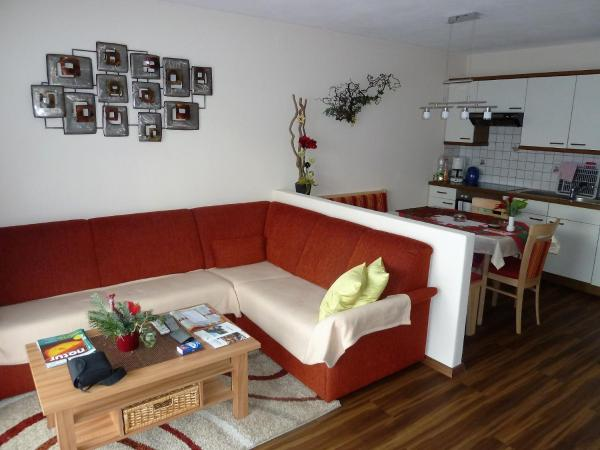 Large One-Bedroom Apartment with Sofa Bed