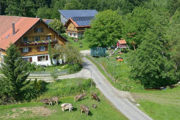 Hotel Pictures: Tannenhof Epple, Opfenbach