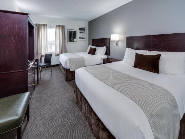 Premier Queen Room with Two Queen Beds