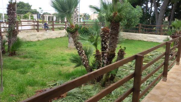 酒店图片: B&B Le Stanze del Sale, 马尔萨拉