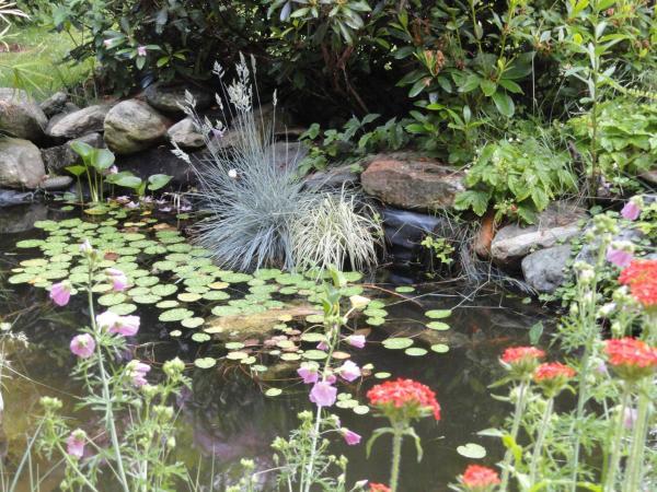 Hotelbilleder: Gartenwohnung Gretl mit Biotop in Seenähe, Seeboden