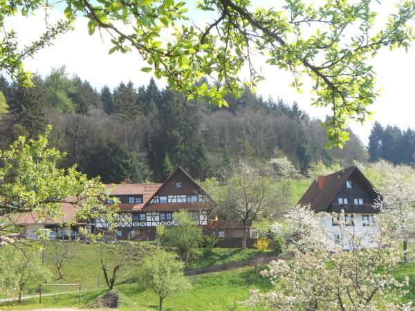 Hotel Pictures: Ferienhof Fischer, Seebach