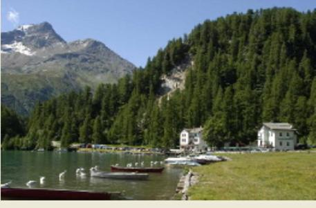 Hotel Pictures: Hotel Cristallina, Sils Maria