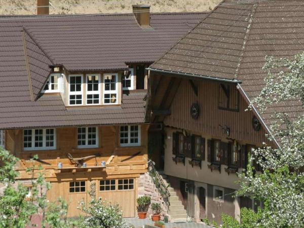 Hotel Pictures: Hinterbauer Hof, Oberharmersbach