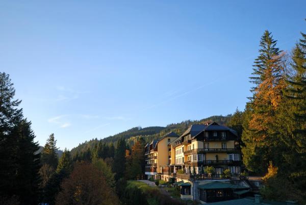 Zdjęcia hotelu: , Gösing an der Mariazeller Bahn