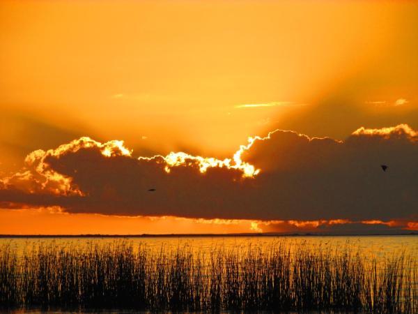 Φωτογραφίες: Lake Albert Caravan Park, Meningie