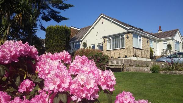 Hotel Pictures: Churston Way Lodge Guest House, Brixham