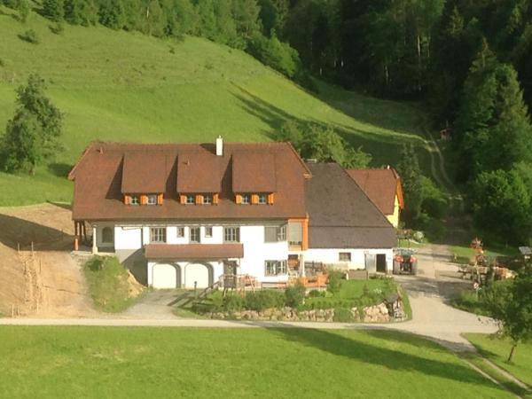ホテル写真: Ferienhof Hintergrabenbauer, Spital am Pyhrn