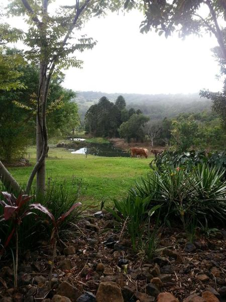 Fotos do Hotel: Charlie's Pocket, Maleny