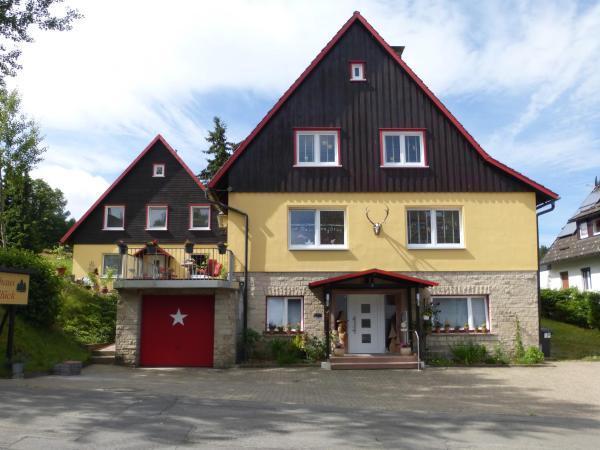 Hotel Pictures: Gästehaus HarzGlück, Braunlage