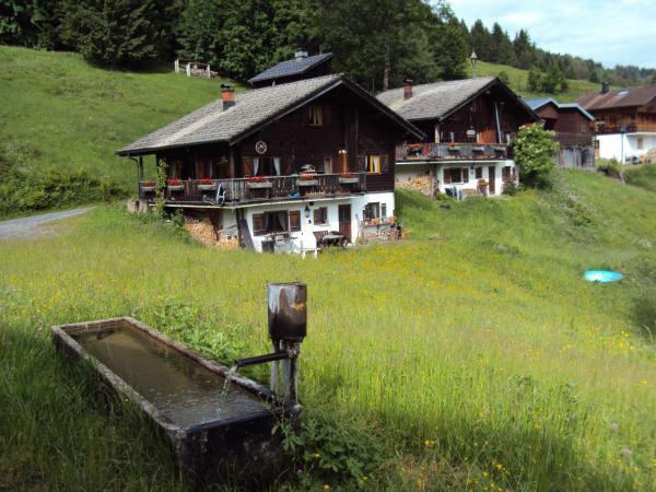 Hotelbilleder: Ferienwohnung im Blockhaus Metzler, Schwarzenberg im Bregenzerwald