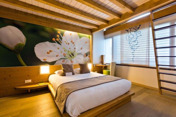 Hotel Pictures: La Croix de Savoie & Spa, Les Carroz dAraches