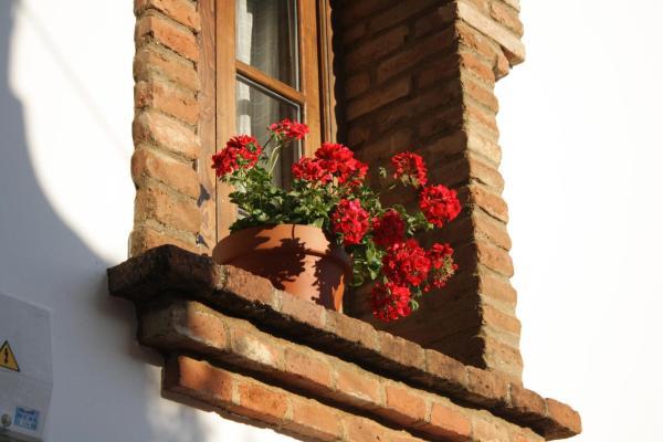 Hotel Pictures: Apartamento Rural Las Palmeras, Almonaster la Real