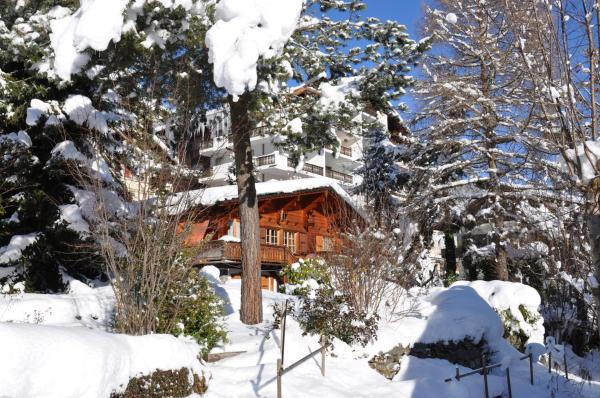 Hotel Pictures: Chalet 930, Champéry