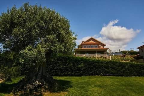 Hotel Pictures: Casa Zulema, Sanxenxo