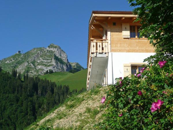 Hotel Pictures: Chalet La Poya, Moleson