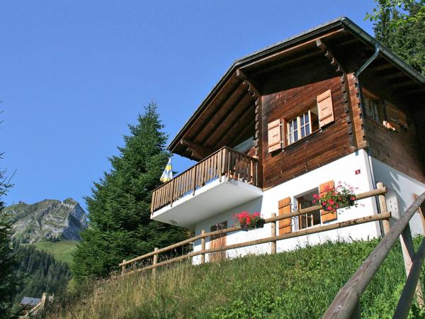Hotel Pictures: Chalet Anna, Moleson