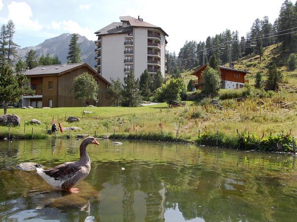 Hotel Pictures: , Siviez