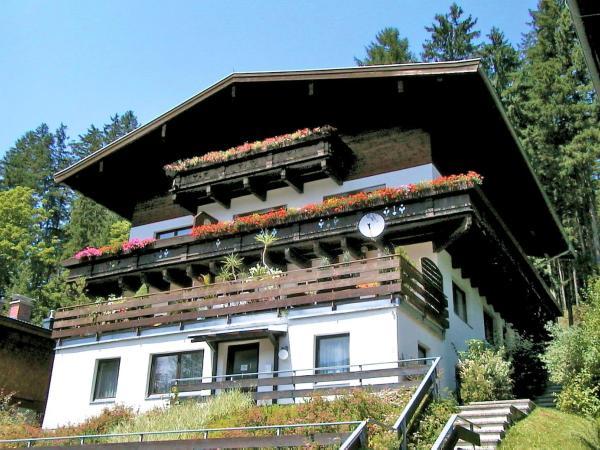 Photos de l'hôtel: Apartment Haus Enzian, Hollersbach im Pinzgau