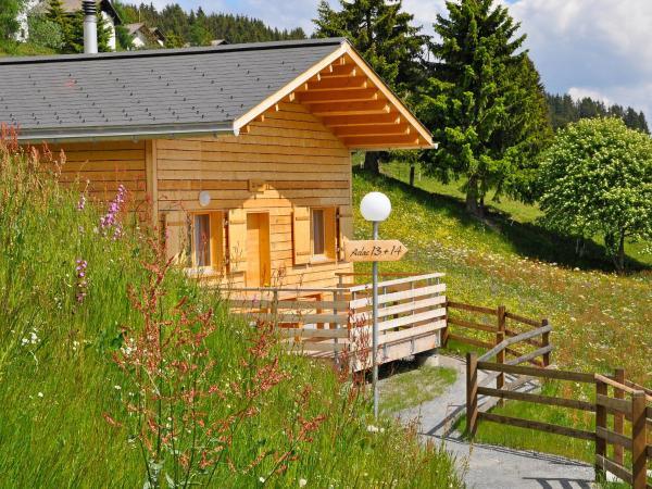 Hotel Pictures: Holiday Park Aclas Maiensäss Heinzenberg.4, Urmein