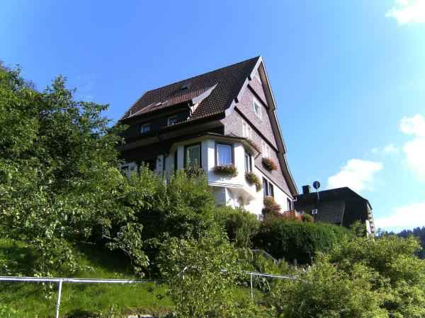 Hotel Pictures: Apartment Maier, Triberg