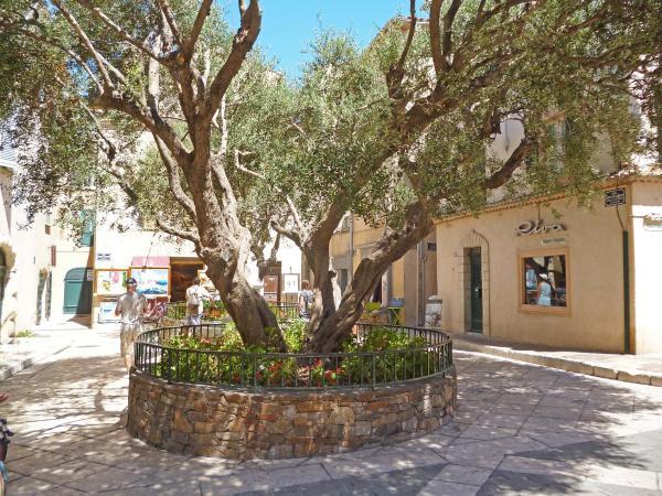 Hotel Pictures: Apartment Saint Esprit, Saint-Tropez