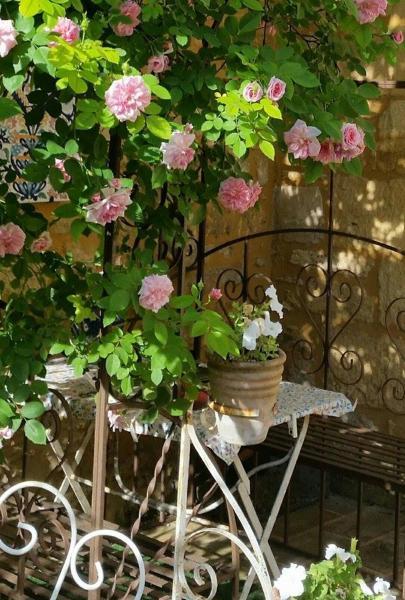 Hotel Pictures: La Demeure du Coeur de Lion, Saint-Cyprien
