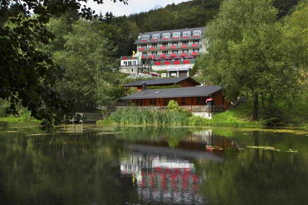 Hotel Pictures: Waldhaus am See, Willingen