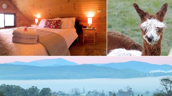 Fotos do Hotel: Alpine Farmstay Apartments, Merrijig
