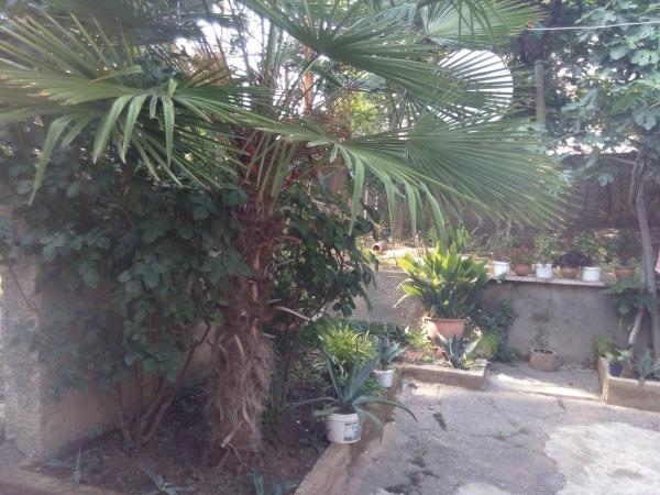 Φωτογραφίες: Apartment Nestani, Kumisi