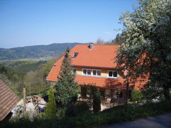 Hotel Pictures: Langenberghof, Oberharmersbach