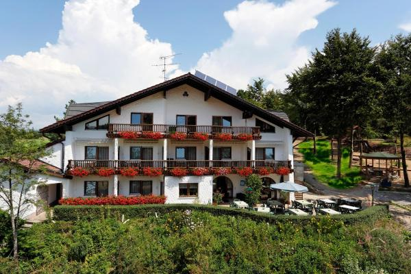 Hotel Pictures: Pension Bergstub`n, Saldenburg