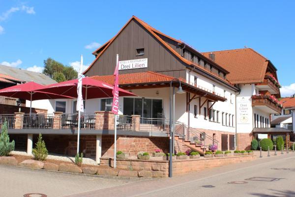 Hotelbilleder: Hotel Drei Lilien, Waldbrunn