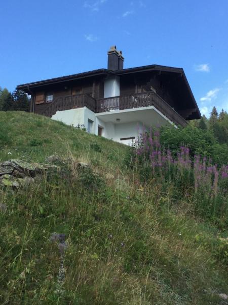 Hotel Pictures: Chalet Foresta OG, Bettmeralp